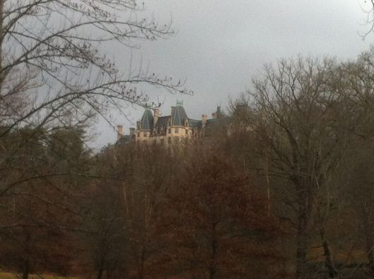 And finally this view of the Biltmore House through the trees. (Photo by Andrea Shea King)