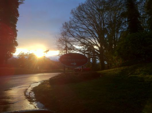 Rounding a corner, the setting sun was reflected on the pavement still wet from the day's rain.  Biltmore Estate, Asheville, NC. (Photo by Andrea Shea King)